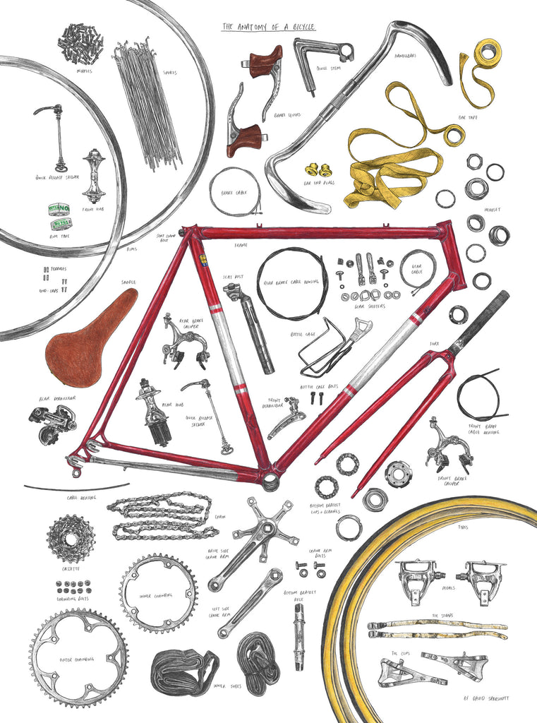 Magma Anatomy of a Bicycle Print by David Sparshott - pt udsolgt/sold out