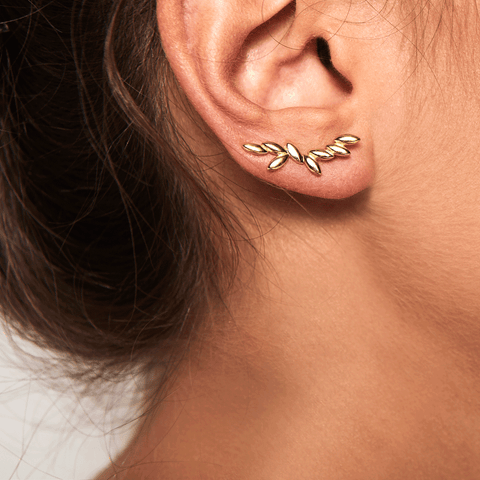 PD Paola Safari Gold Earrings