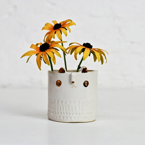 Mini Cat Pot