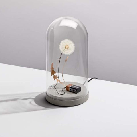 Dandelight Lamp with dome and powerbase