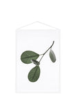 Moebe Floating Leaves Print 05