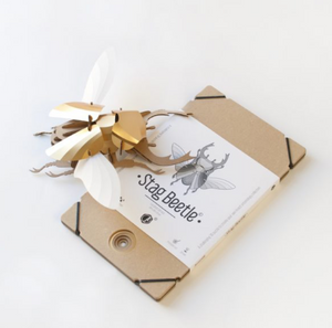 3D Entomology Insect Puzzle - Stag Beetle
