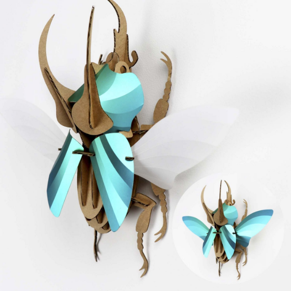 3D Entomology Insect Puzzle - Atlas beetle