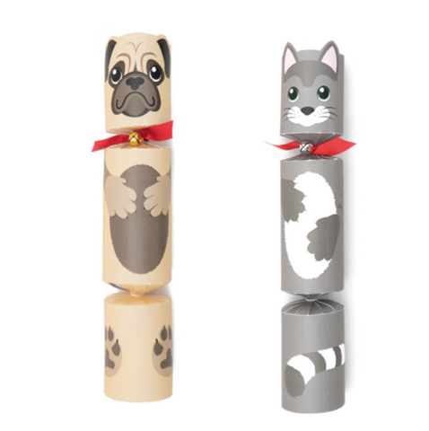 Dog / Cat Christmas Cracker with Toy