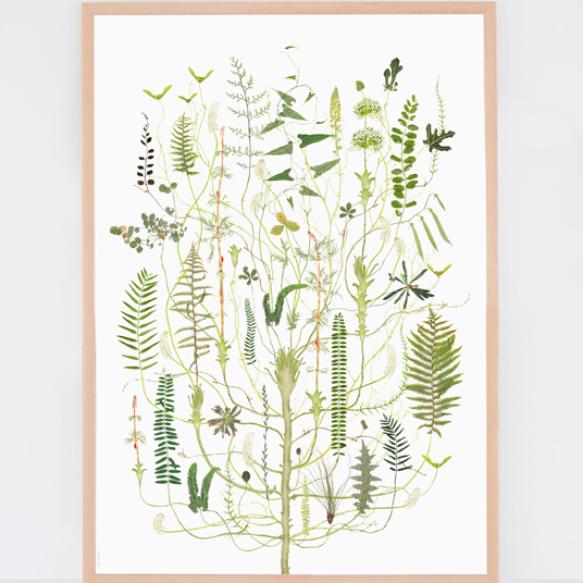 Lottas Trees - Green Flora print
