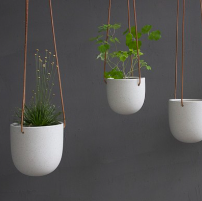 Hanging Pot - coming soon!