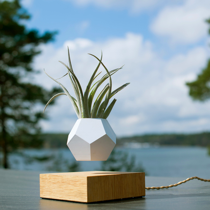 FLYTE Lyfe Levitating Planter