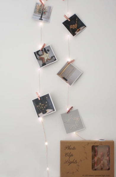 Copper Picture String Lights