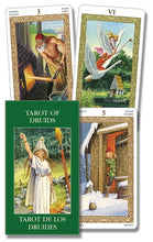 Load image into Gallery viewer, Tarot of Druids Mini