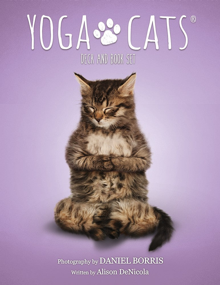 Yoga Cats Deck & Book Set