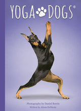 Load image into Gallery viewer, Yoga Dogs Deck & Book Set