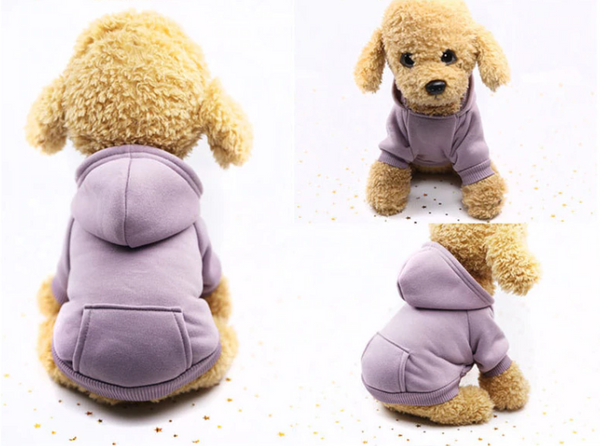 Comfy daily dog's wearing(purple) - Kangaroo Pocket Solid Color Pet Sweater Hoodie | Attapet.com