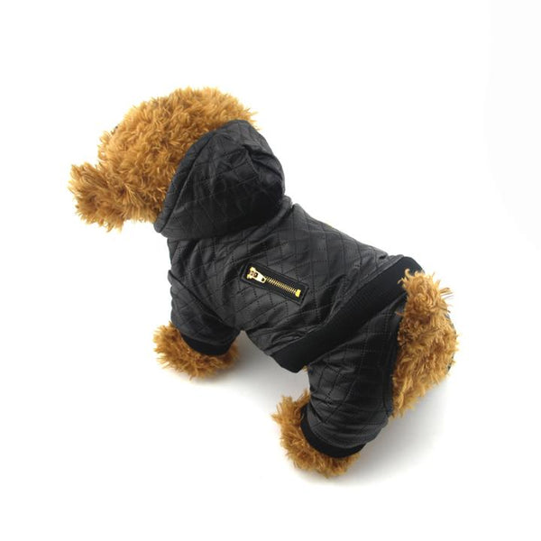 The Grooming Puppy Model 1 Wearing our Grooming Leather Jacket - Winter Grooming Pet Leather Hoodie Jacket Jumpsuit   Attapet.com