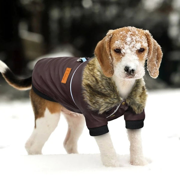 Awesome Jacket for Dogs - Puppy Model Image 1 (Color Brown) - Waterproof Windproof Winter Leather Puppy Jacket Coat with Faux Fur Collar | Attapet.com