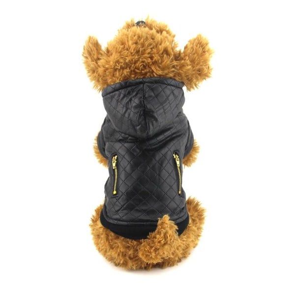 The Grooming Puppy Model 3 Wearing our Grooming Leather Jacket - Winter Grooming Pet Leather Hoodie Jacket Jumpsuit   Attapet.com