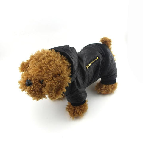 The Grooming Puppy Model 4 Wearing our Grooming Leather Jacket - Winter Grooming Pet Leather Hoodie Jacket Jumpsuit   Attapet.com
