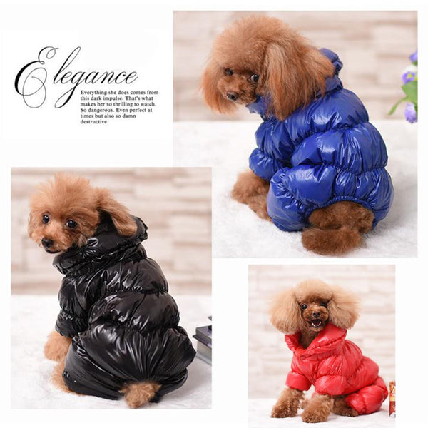 Puppy Model Display(Black, Red, Blue) - Reflective Solid Color Pet's Down Jacket With Buttons | Attapet.com