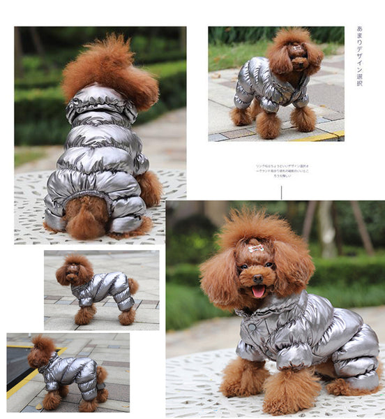 Model Display(Color Silver) - Reflective Solid Color Pet's Down Jacket With Buttons | Attapet.com