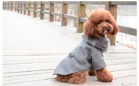 Puppy Model Display 1(Color Grey) - Winter Warm Gentle Formal Pet Coat for Kitty & Puppy | Attapet.com