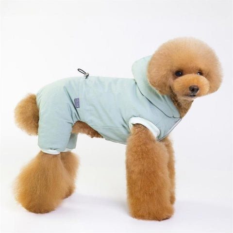 Color Light Green Model 1  - Minimalism Solid Color Cotton Pet Hoodie With Buttons | Attapet.com