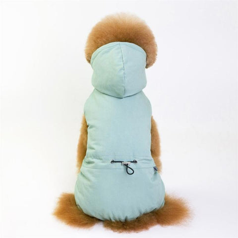 Color Light Green Model 2  - Minimalism Solid Color Cotton Pet Hoodie With Buttons | Attapet.com