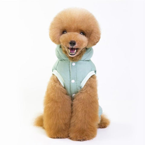 Color Light Green Model 3  - Minimalism Solid Color Cotton Pet Hoodie With Buttons | Attapet.com