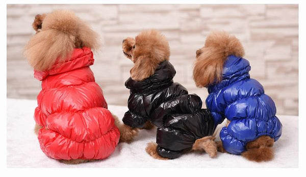 Model Image Back Side - Reflective Solid Color Pet's Down Jacket With Buttons | Attapet.com