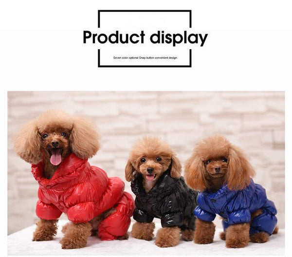 Model Image Front Side - Reflective Solid Color Pet's Down Jacket With Buttons | Attapet.com