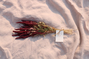 AMARANTHUS RED