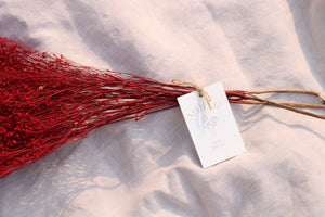 BROOM RED