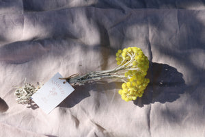 IMMORTELLE YELLOW