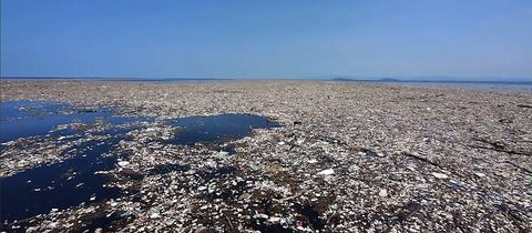 The Great Pacific Garbage Patch of floating plastic waste covering 8% of the Pacific Ocean. Twice the size of continental US