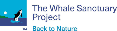 whale sanctuary project charity dedicated to providing sea sanctuaries for the rehabilitation of orcas freed from captivity