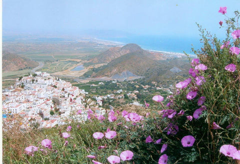 Birds eye view of Mojacar pueblo, world famous Spanish white village, where the Moors surrendered to Christians in 1488