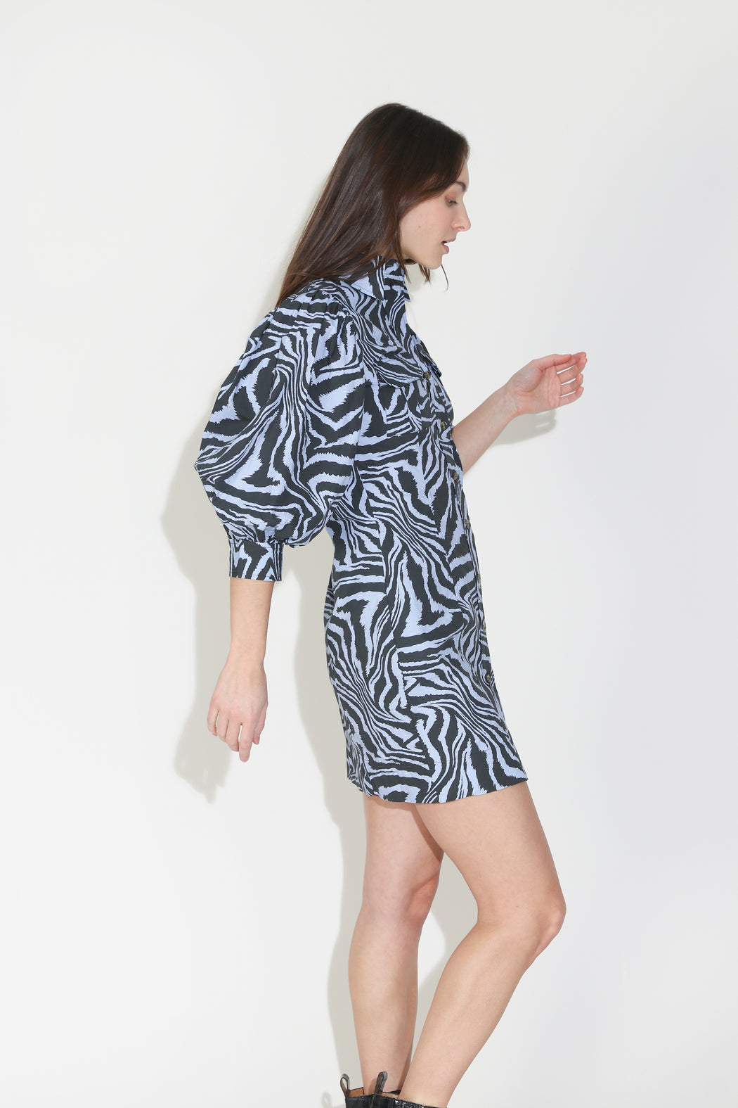 Ganni Printed Cotton Poplin Dress in Forever Blue