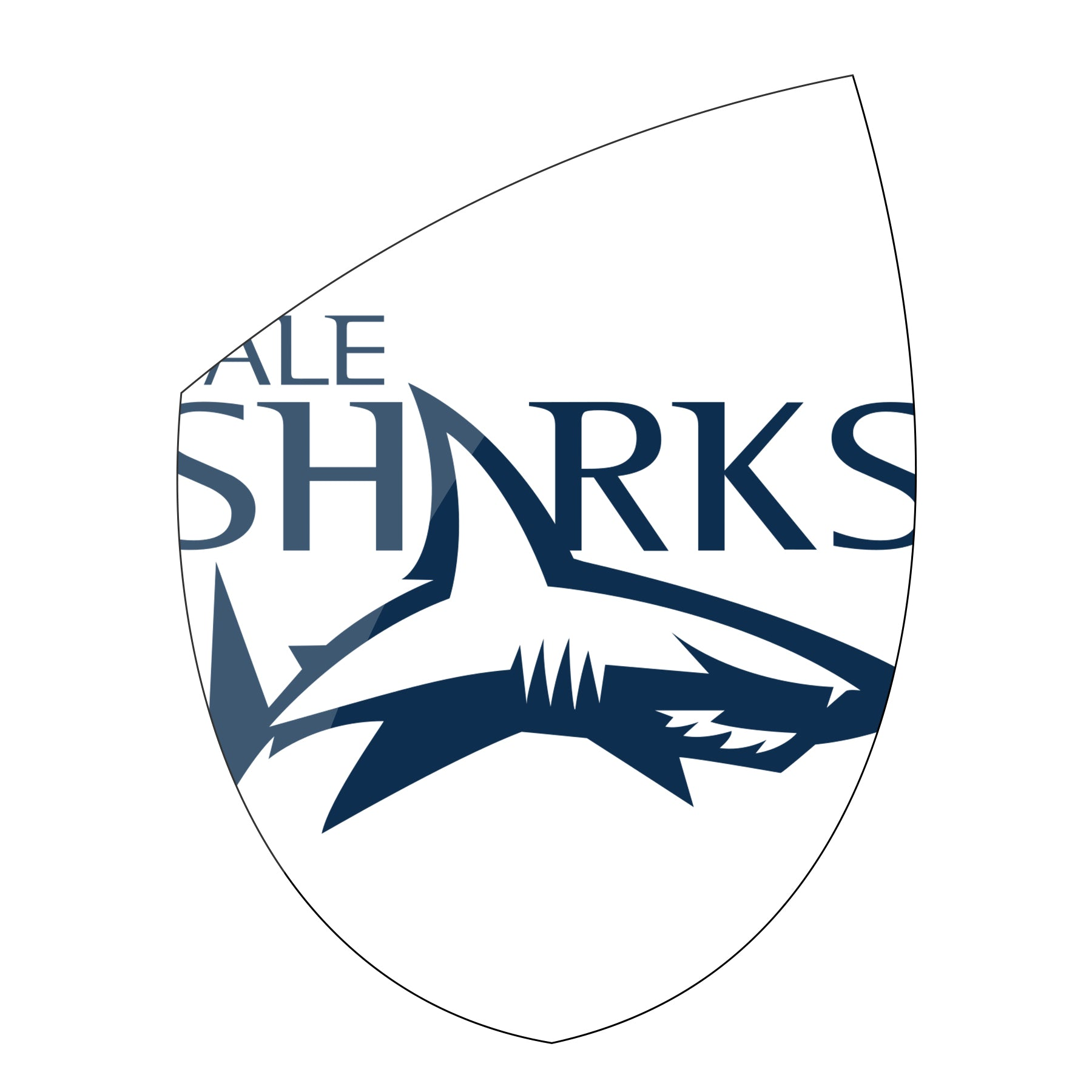 Exclusive Sale Sharks Rugby Gear