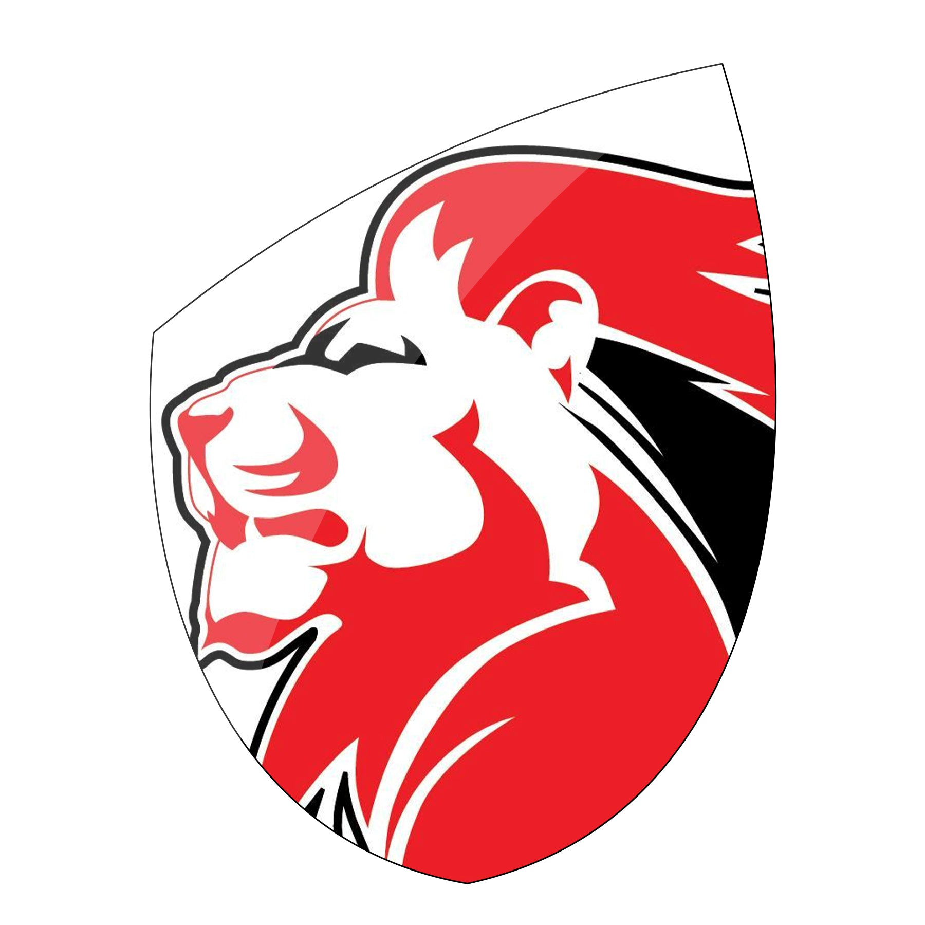 Exclusive Lions Rugby Gear