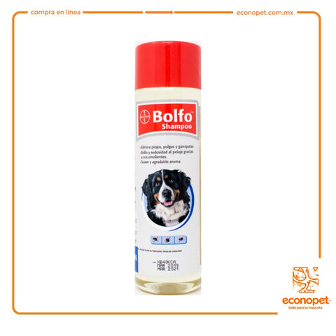 SHAMPOO BOLFO 350ML