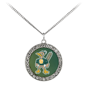 Roadrunners Modern Mascot Stone Coin Necklace