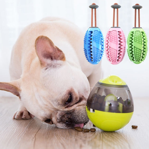 Food Ball Tooth Brush Chew Toy