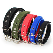 Soft Leather Lined Dog Foam Collar