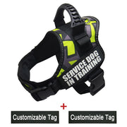 Reflective Adjustable Dog Harness