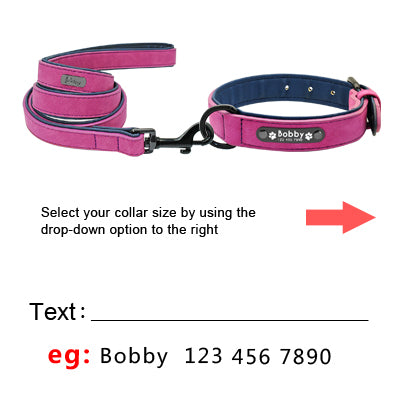 Dog Tag Collar And Leash Set
