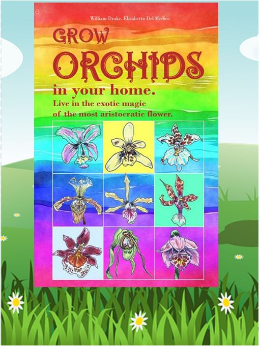Grow orchids in your home. Live in the exotic magic of the most aristocratic flower.
