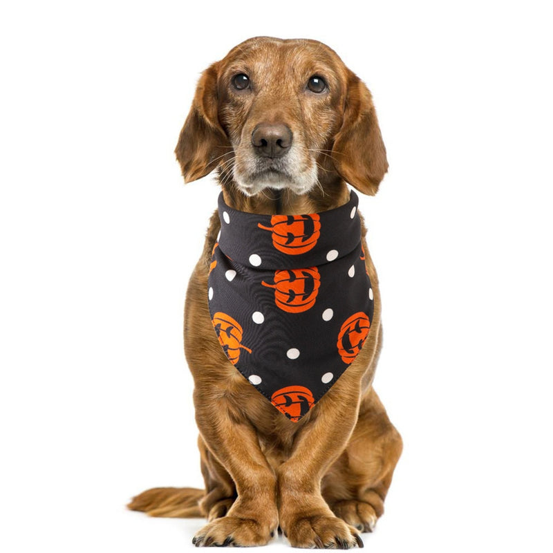 Dog Halloween Black Bandana