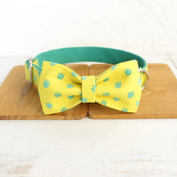 Warm Dog Collar with Bow Tie and Leash