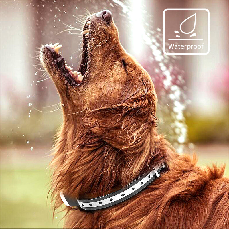 Lightweight Waterproof Dog Training Shock Collar with Remote for Large/Small Dog