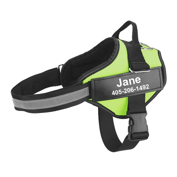 Personalized Breathable Dog Harness