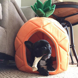 Pineapple Warm Cotton Dog Bed