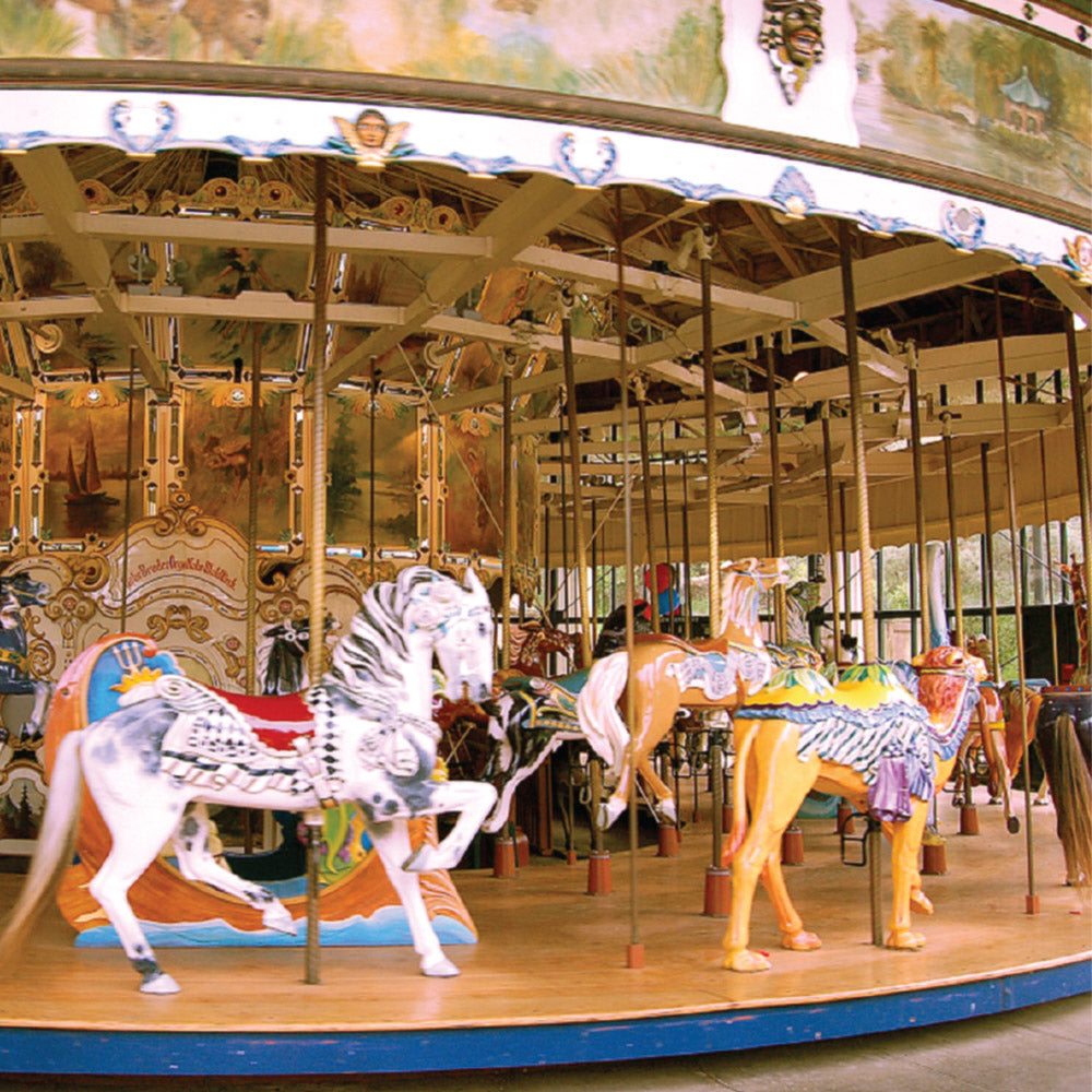 May Your Life be a Carousel Ride ! - Cards | Baby, Baby, Baby: fine art greeting cards, blank greeting cards, greeting cards with color pictures